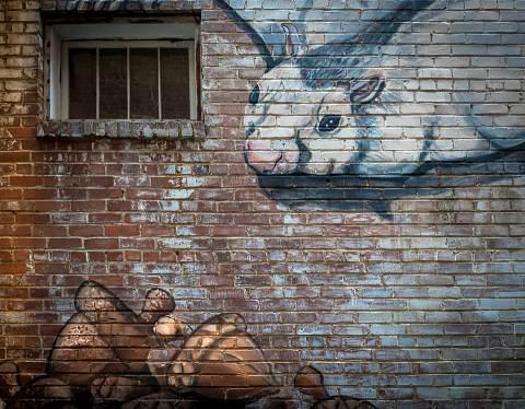 Brevard-Alleyways-20140915-0024.jpg