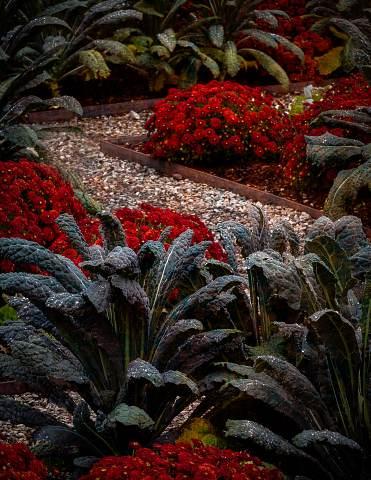 NC-Arboretum-Workshop-20141013-0047-Edit.jpg
