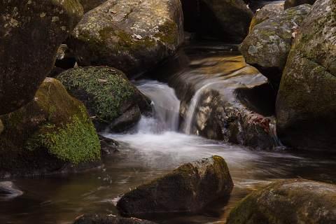 Jones-Gap-State-Park-20101031-0079.jpg