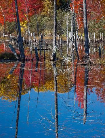 Michigan-Upper-Peninsula-20120930-059.jpg