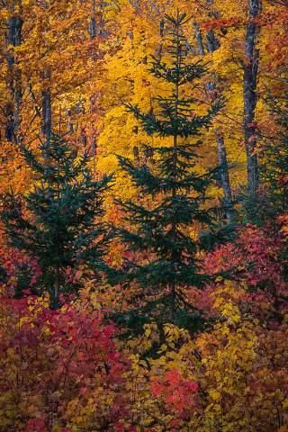 Michigan-Upper-Peninsula-20121002-007.jpg