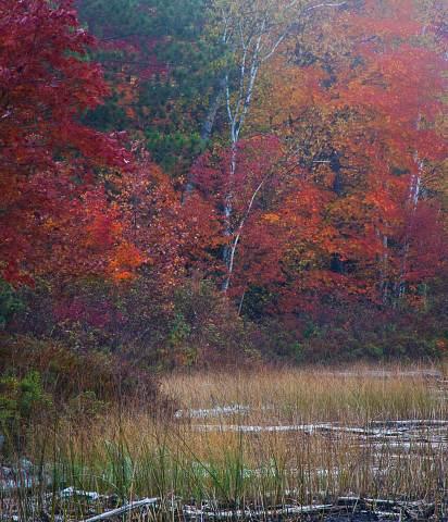 Michigan-Upper-Peninsula-20121003-024.jpg