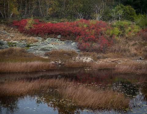 Acadia-20121016-040.jpg