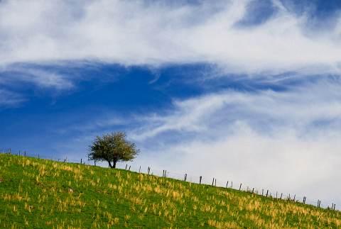 Canaan-Valley-20130504-0265.jpg