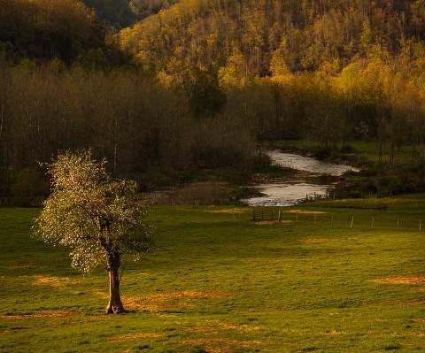 Canaan-Valley-20130503-0206.jpg